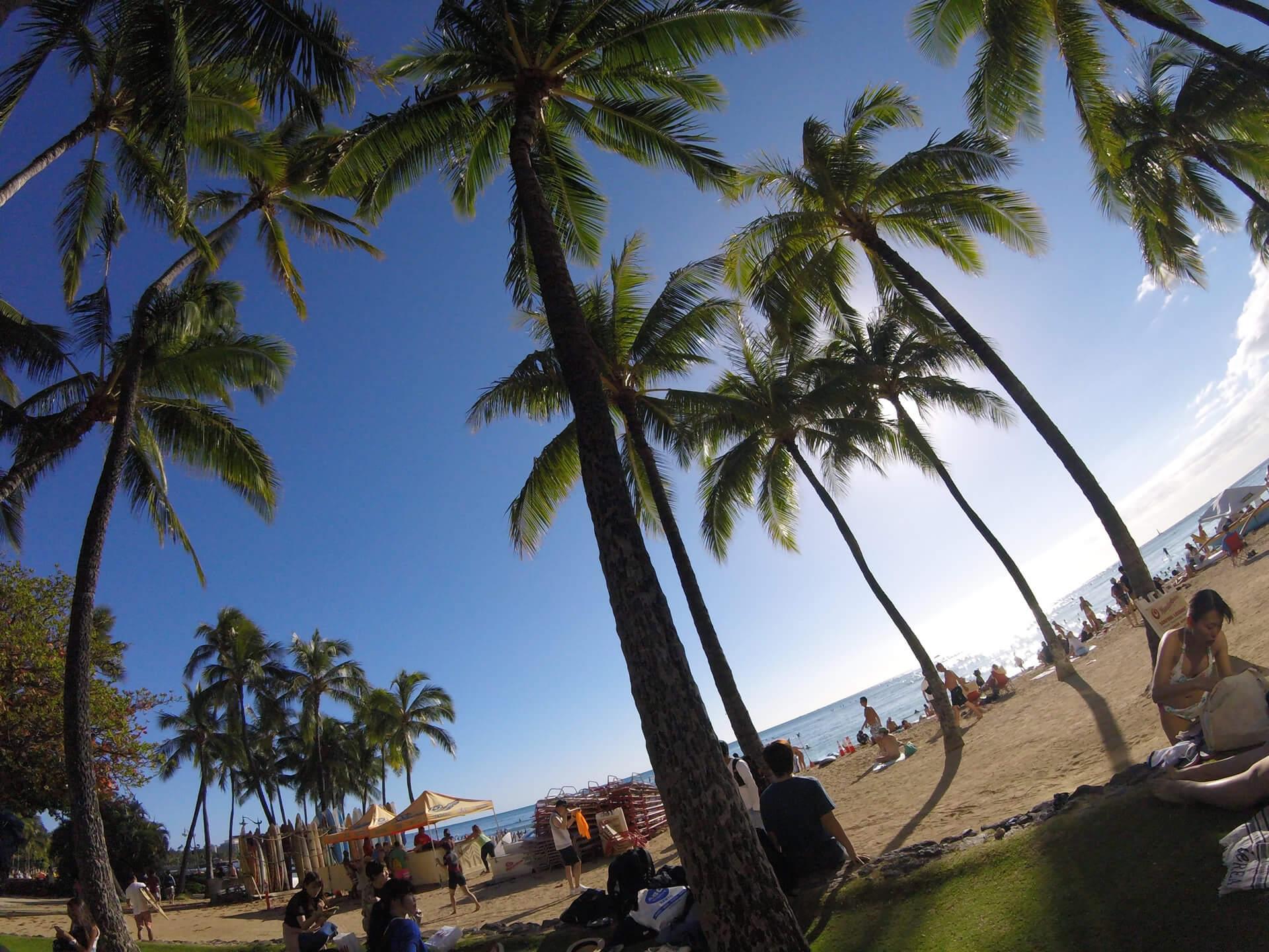 猿人の展示会出展への道~ブース担当ナオミのハワイにかける熱い思い~
